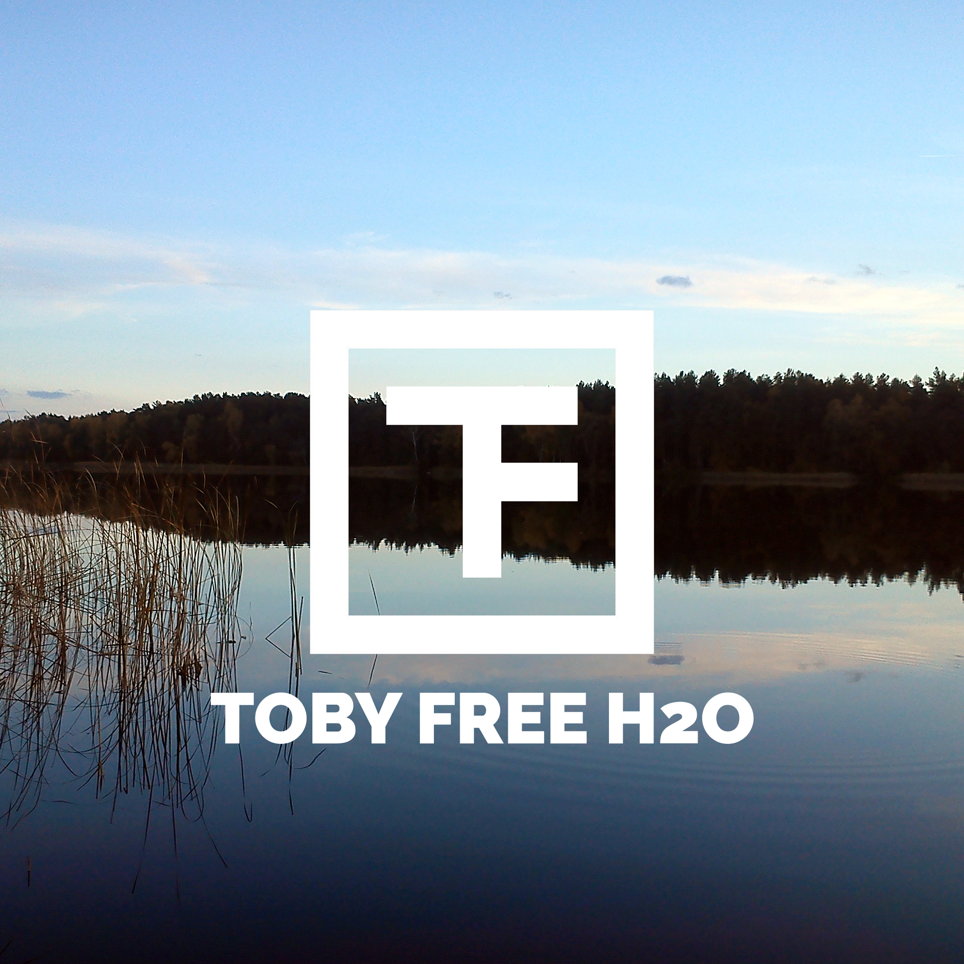 Toby Free - Beach Waves (Free Download) - TobyFree com